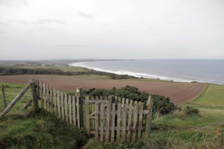 Flamborough & Bempton Sea Front