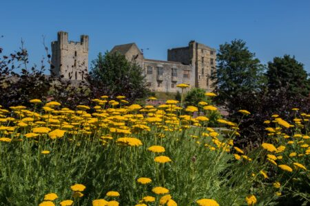 Helmsley Walled Garden and castle July 2