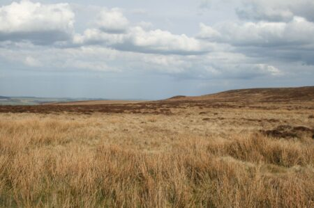 Ilkley Moor (Cowper's Cross)